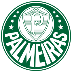 Cartela Perfurada Time Palmeiras Para Maquina Lanofix ou Elgin
