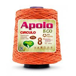 Barbante Apolo Eco Circulo N.08  600g